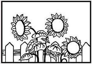 Nellie Snellen - Embossing folder - Sunflower