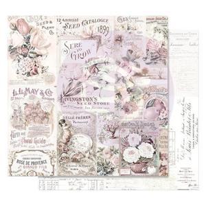 Prima -Lavender frost  - My lovley garden