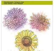 CE-Clearstamp-Chrysanthemums flower Botanical Summer