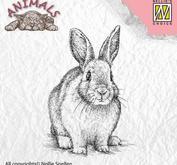 """Nellie - Snellen -  Clear Stamps Animals """"rabbit"""""""