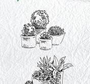 "Nellie Snellen - clearstamp - Idyllic Floral Scenes ""Pots with flowers"""
