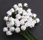 10 st rosenknoppar färg vit - semi, stora